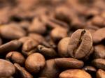 猫窝咖啡课堂 咖啡与癌症的关系