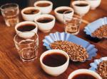 活动反馈|杯测——咖啡独一定义